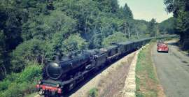Be tempted by an outing on a steam train